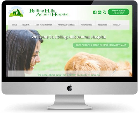 Animal Hospital Web Design